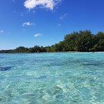 Lagoon picture