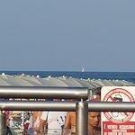 Green Beach Bamby Photo