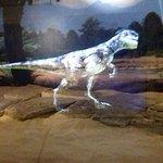 High tech, moving dinosaur.