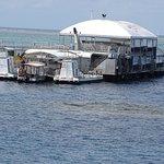 Photo of Quicksilver Cruises