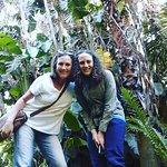 Botanical Gardens Stellenbosch
