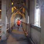 Newcastle Cycle Tours照片