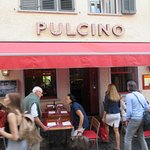 Pulcino照片