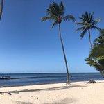 Billede af Pearl Beach Club