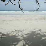 Photo of Radhanagar Beach