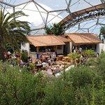 Photo of Med Terrace Restaurant