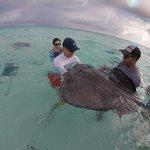 Six Senses Cayman Adventures照片