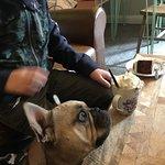Фотография Woods Cafe