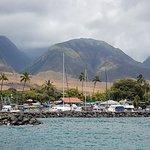 Quicksilver Maui Snorkeling Charters의 사진