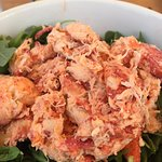 Lobster Roll without the roll on a bed of argula