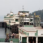 The view of the Ferry from Friday's Crabhouse