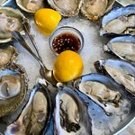 Bluffs above, Pacifics below! Great oysters!