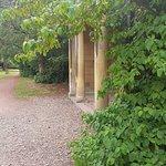 Foto van Norton Priory Museum and Gardens
