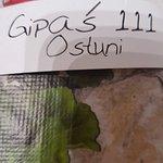 Gipas 111 Foto
