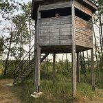 Bilde fra Birds Hill Provincial Park