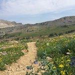 Bild från Cascade Canyon Trail