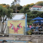 Winking Prawn Beach Cafe