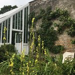 Foto de Tullynally Castle & Gardens