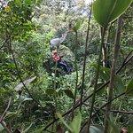 Foto de Mindo Nambillo Cloud Forest Reserve