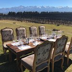 Mendoza Wine Bike Tour照片