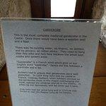 Tiverton Castle fényképe