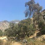 Eaton Canyon Natural Areaの写真