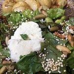 Néctar Salad