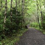 Bild från Butze Rapids Park and Trail