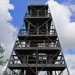 Foto van Grand Bay Wildlife Management Area