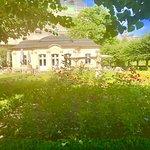 Фотография Rose Garden at the New Residenz