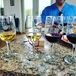 Foto de Staller Estate Winery