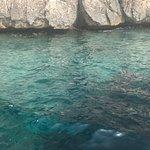 Foto Ecosport Sardinia