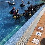 Diving Center Sun Sub Foto