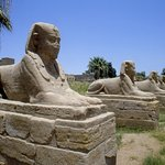 Avenue of Sphinxes Foto