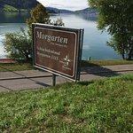 Photo de Morgarten Denkmal