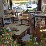 Chiotis' yard at noon