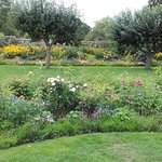 Flower borders at Baddesley Clinton