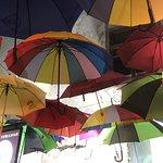 Bild från Galo do Porto
