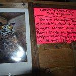 Фотография Stanwood Homestead Museum and Bird Sanctuary