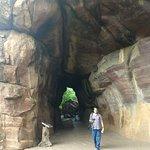 Bhimbetka Caves照片