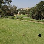 La Contenta Golf Club Foto