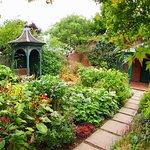 Town Paradise Garden