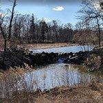 Duke Farms pond