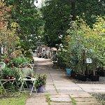 Hopetoun House Garden Centre 05