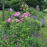 Foto van Skylands New Jersey Botanical Gardens