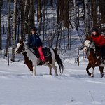 Foto de Equitation Jacques Robidas