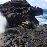 The Nakalele Blowhole in Action!