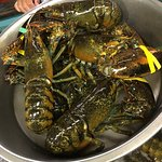 Bilde fra Young's Lobster Pound