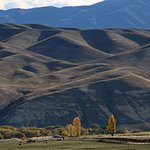 Tiger Hill, Central Otago, New Zealand