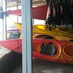 Photo of Santorini Sea Kayak - Day Tours